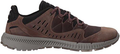 Basses Randonnée Marron Chaussures Ecco Coffee Homme de Terrawalk Mocha g1Oq4wx