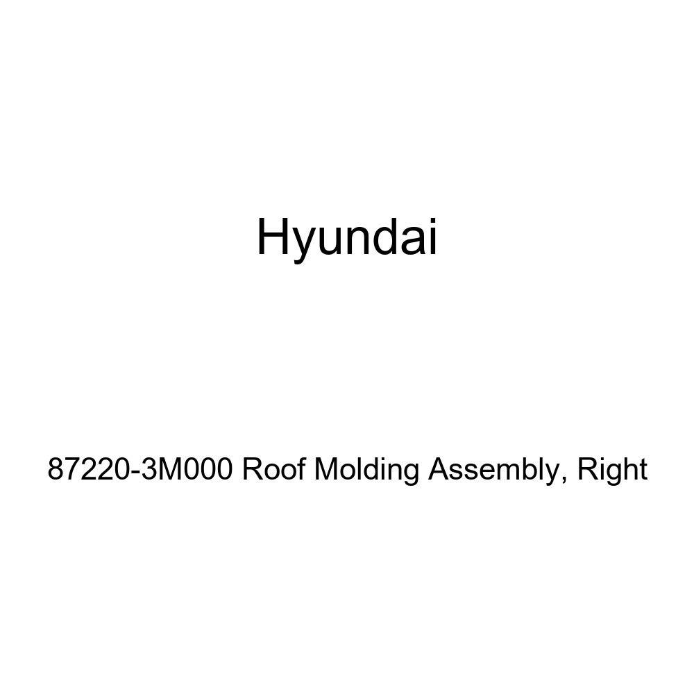 Genuine Hyundai 84723-4D000 Center Pad Cluster Support Bracket