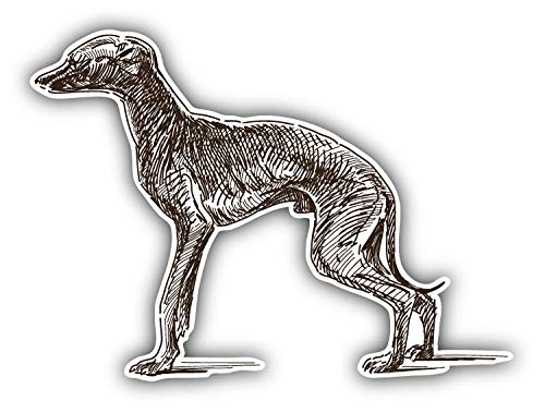Magnet Italian Greyhound Dog Sketch Window Truck Car Vinyl Flexible Magnet Magnetic Bumper Sticker 5'' x 4'' (Greyhound Dog Magnet)