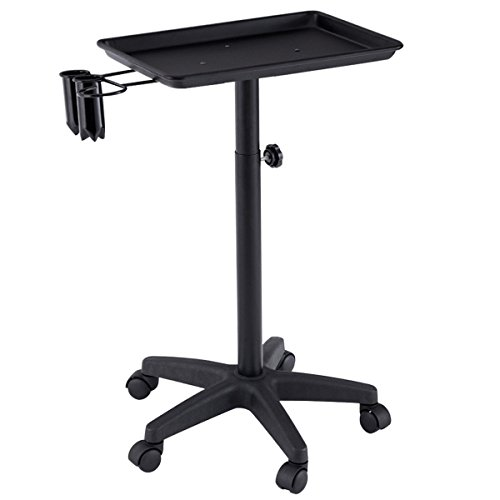 Instrument Tray Equipment Salon Spa Tray Beauty Rolling Cart with Appliance Holder (Black)
