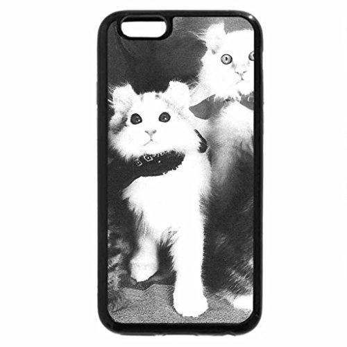 iPhone 6S Case, iPhone 6 Case (Black & White) - American Curl cats