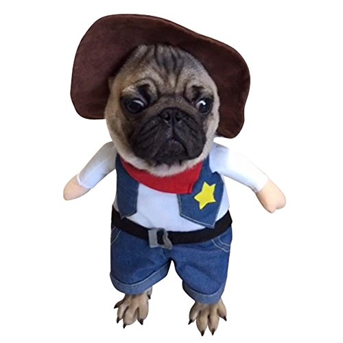 NACOCO Cowboy Dog Costume with Hat Dog Clothes Halloween Costumes for Cat and Small Dog (Medium) - Yorkie Teddy Bear Costume
