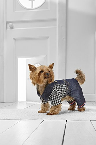 Jumpsuit Yorkie Maltese Chihuahua Papillon product image