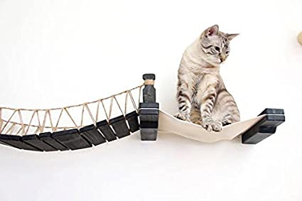 Amazon.com : CatastrophiCreations The Cat Mod - Wall-Mounted Bridge Lounger for Cats : Pet Supplies