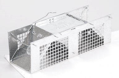 Havahart 1020 Two Door Mouse & Rat Trap Cage ()