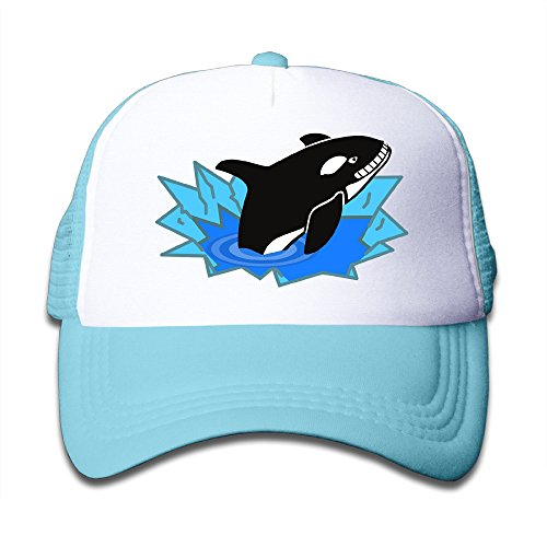 Elephant AN Orca Killer Whale Mesh Baseball Cap Kid Boys Girls Hat (Crazy Chef Costume)