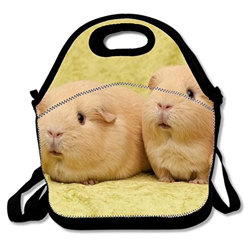phjyjy Lunch Bag Insulated Lunchbox Cooler Pouch Shopper Tote Guinea Pig Family Portable Fashion Cover School Work