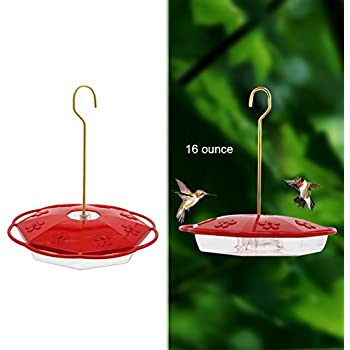 Maggift 16 oz Hanging Hummingbird Feeder with 8 Feeding Ports