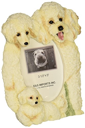 Poodle Frame (Poodle  Picture Frame Holds Your Favorite 3 x 5 Inch Photo,  A Hand Painted Realistic Looking Poodle  Family Surrounding  Your Photo. This Beautifully Crafted Frame is A Unique Accent To Any Home or Office. The Poodle  Picture Frame Is The Perfect Gift For Poodle  Owners And Lovers!)