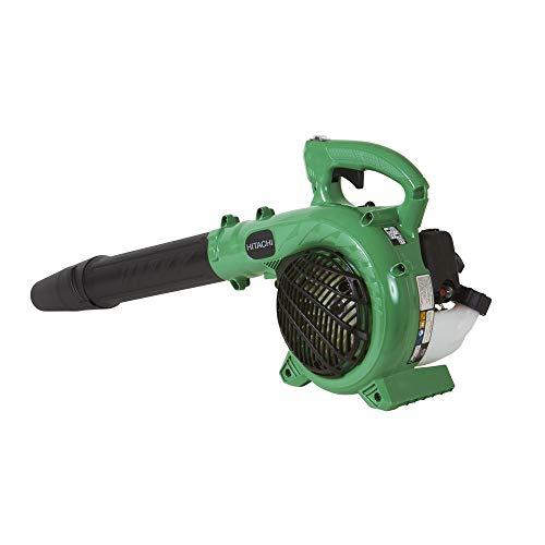 Buy value leaf blower