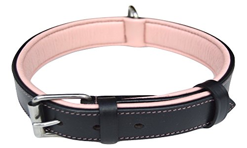 Luxury Two Toned Black and Pink Leather Padded Dog Collar, Medium , Made with the Finest Genuine Leather - Best Quality Collar That Is Stylish, Soft, Strong and Comfortable (Leather Nameplate)