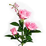 Chasgo Outdoor Solar Decorative Garden Stake Light, Rose Flower Solar Garden Light Outdoor Flower Garden Decoration, Pink Solar Rose