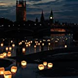 Water Floating Candle Chinese Lanterns Biodegradable - Set of 10