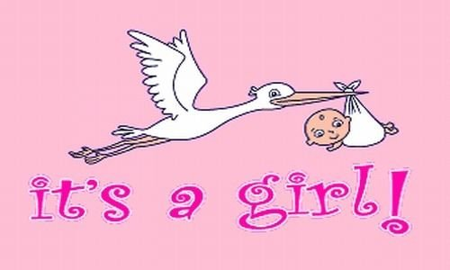 Stork Birth Girl Announcement (Be_Bra IT'S A GIRL Flag 3x5 ft Pink Baby Shower Birth Announcement Yard Stork Party NEW)