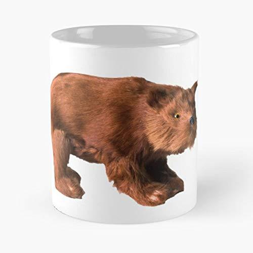 Taxidermy Fur Toy Figurine - Best Gift Ceramic Coffee Mugs 11 Oz