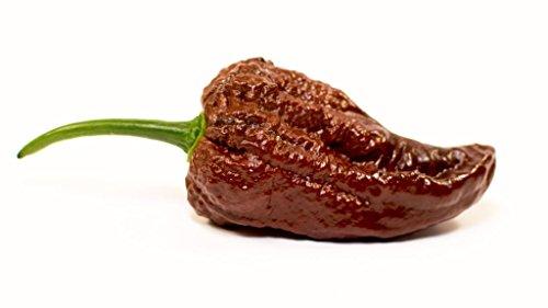 Carolina Reaper HP22BNH7 Red Hot Chili Pepper Seeds 25 PCS World's Hottest!