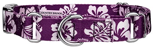 Country Brook Design Purple Hawaiian Martingale with Premium Buckle - Large