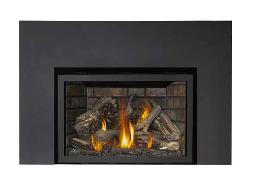 Napoleon Infrared X4 Natural Gas Fireplace Insert - Package 6 - Fireplace Insert Package