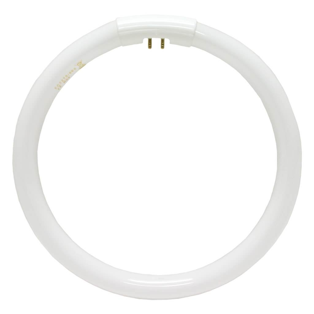 Daylight 22 Watt Circular Replacement Bulb
