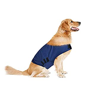 Laramie Anti-Anxiety Dog Jacket