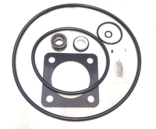 O-Ring Replacement Kit (1998 to Present) For Sta-Rite P2RA & P2R DuraGlas / MaxeGlas Pump Rebuild Kit 54 - Dura Glas Pump