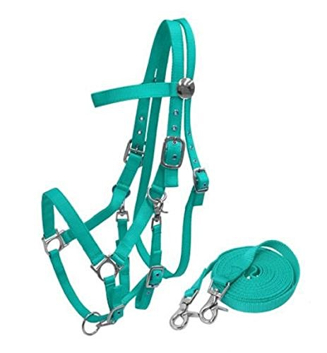 Heavy Duty Soft Nylon Horse size Halter Browband Bridle Combo Trigger Snaps Cheeks & Reins (Turquoise)