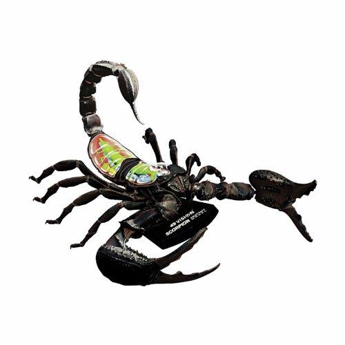 4d Spider - 2