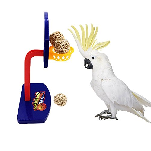 Bird Intellective Mini Basketball Rack Training Toy for Budgies Parakeet Parrot Cockatiels Conures Small and Medium Birds