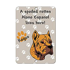 Aluminum Metal Sign Funny Spoiled Rotten Alano Espanol Dog Lives Here Informative Novelty Wall Art Vertical 8INx12IN 13