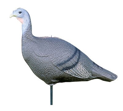 Flambeau SF00845 Feather Flex Decoys Turkey Hen Decoy with (Hen Turkey Decoy)