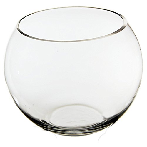 CYS EXCEL Glass Bubble Bowls Fish Bowls by Round Shaped Glass Bowls - Multiple Sizes - H:6'' Open D:6'' Body D:8''
