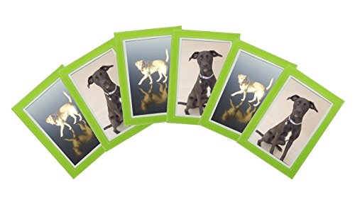 Green Magnet Frame 6 Pack 4