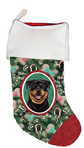 Best of Breed Rottweiler Dog Breed Christmas Stocking ()