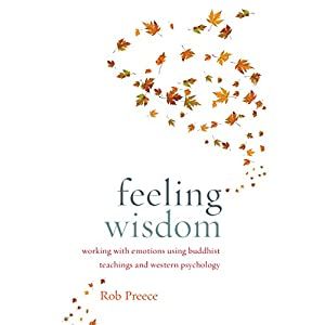 Feeling Wisdom Audiobook