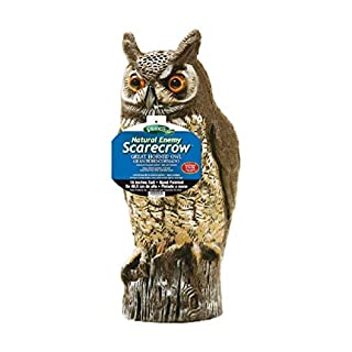 Dalen Natural Enemy Scarecrow Great Horned Owl, Chemical-free pest control, safe and humane, protect gardens, fruit and vegetables from birds and other pests, 16""