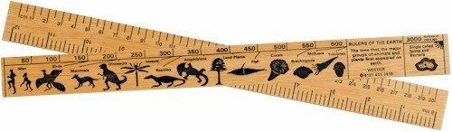Natural History Ruler - 30cm Westair