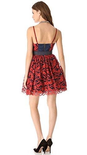 Olivia Poof Belted Lace Dress Alice Flower Sia Cocktail 6 ZqF6tdwC