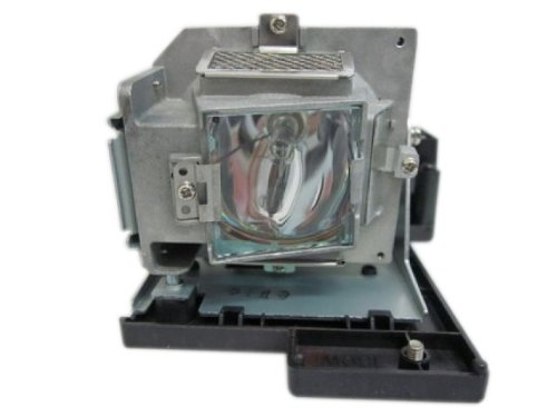 BenQ Replacement Lamp with Housing and Original Bulb for ...