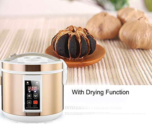 Black Garlic Fermenter, HomeYoo Black Garlic Ferment Box, Smart Fermentation Machine, Full Automatic Intelligent Control Garlics Maker Multiple Clove Garlic DIY Cooker, Home/Kitchen Utensil (Golden) by HomeYoo (Image #4)