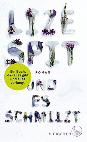 und-es-schmilzt-roman