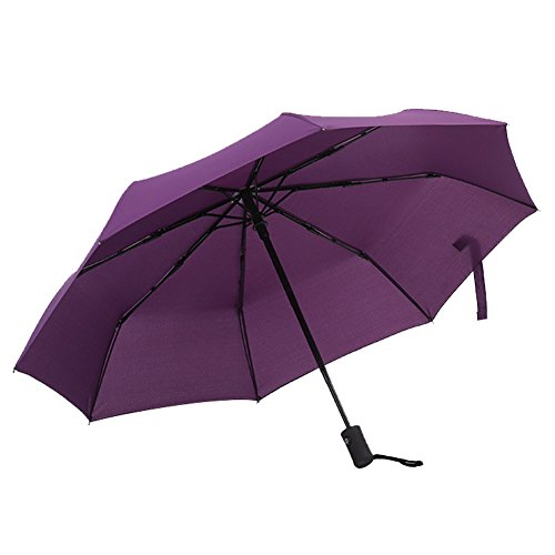 Cheap Travel Umbrella 10 Ribs Compact Windproof Umbrella with Reinforced Teflon Coating Canopy Folding Umbrella Auto Open Close for Men and Women