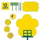 Best Fruit Fly Traps - Sticky Traps, 12 Pack Sticky Fruit Fly Review