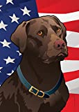 Citizen Pride USA Chocolate Lab Large House Flag by Joe Barsin, 28×40 Review