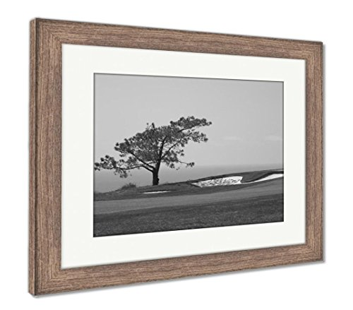 Ashley Framed Prints View from Torrey Pines Golf Course, Wall Art Home Decoration, Black/White, 30x35 (Frame Size), Rustic Barn Wood Frame, AG5597047 (Course Wood Golf)