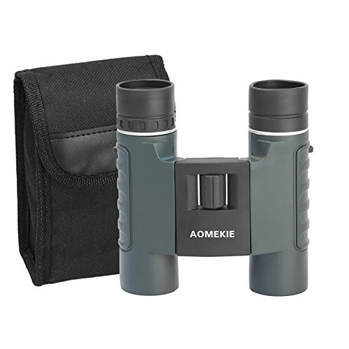 Cheap Aomekie Compact Binoculars for Kids Adults 10X25 Waterproof Mini Pocket Folding Binoculars Telescopes with Carrying Case and Strap for Sports Concerts Theater Birdwatching Hunting
