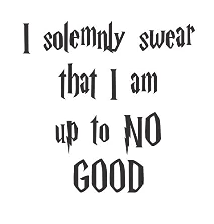 be5721866b21 Amazon.com  Wheeler3Designs I solemnly swear I am up to no good quote vinyl  decal  Home   Kitchen