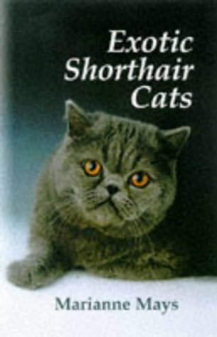 Exotic Shorthair Cats by Tfh Pubns Inc