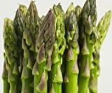 Asparagus seeds-Mary Washington 100+ Fresh seeds