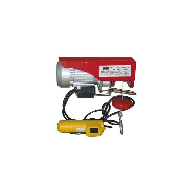 Heavy Duty Electric Hoist 441 lbs. Capacity with Remote Control