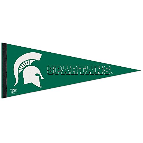 WinCraft Michigan State Spartans NCAA 12X30 Premium Pennant - Team Color,